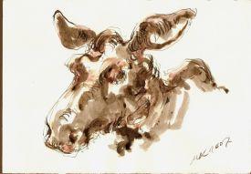 Elk.Voll